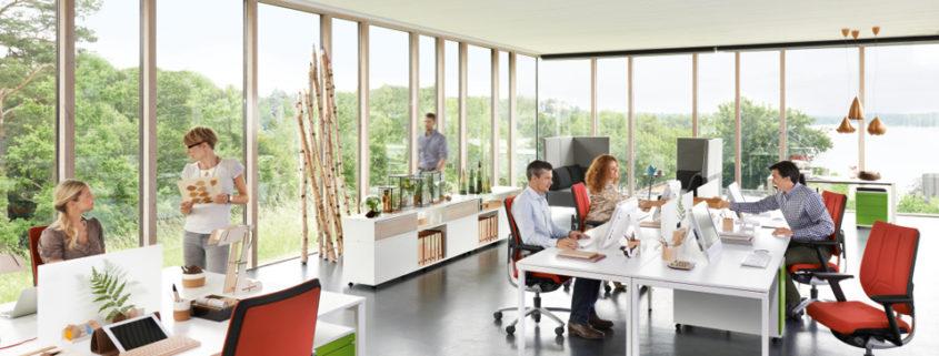Sedus Bürostühle